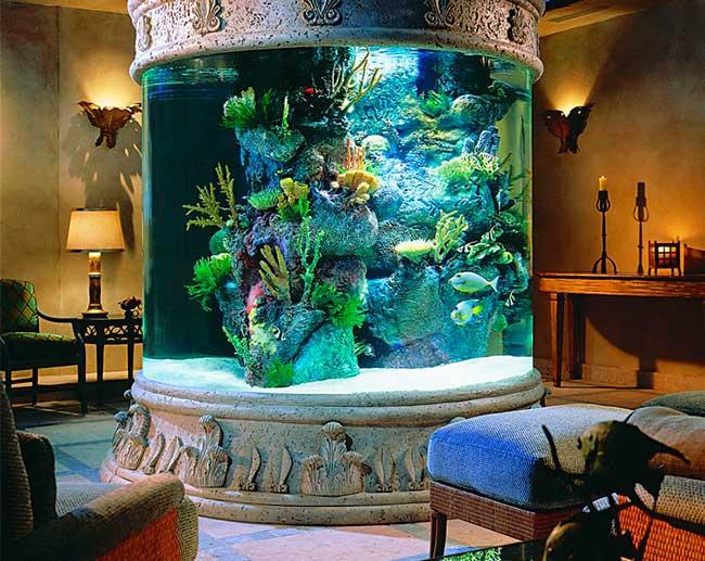 заказать интерьерный аквариум