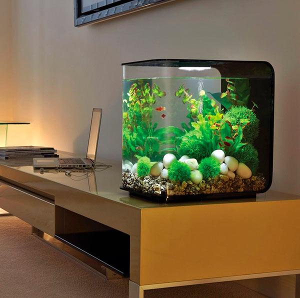 кубические аквариумы в интерьере
