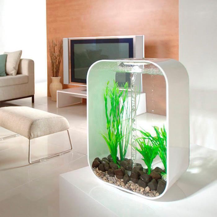 нестандартный аквариум