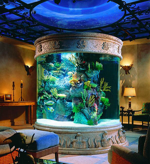 аквариум-колонна