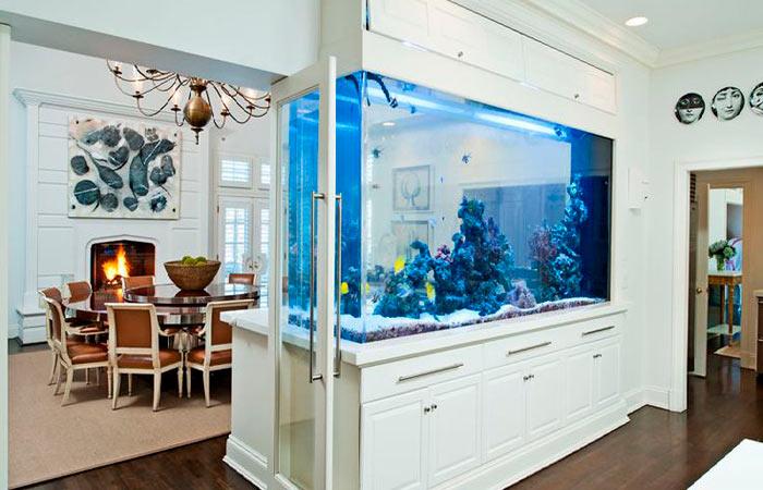 аквариум в виде перегородки