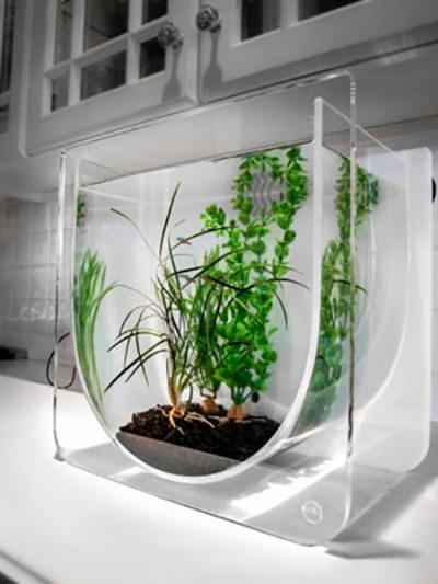 аквариум оригинальной формы