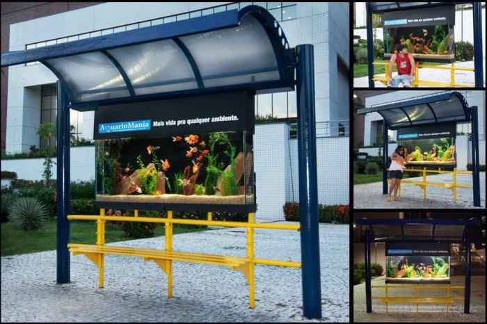 аквариум в автобусной остановке