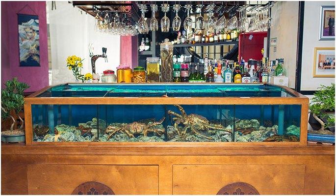 аквариум для моллюсков в ретсоране